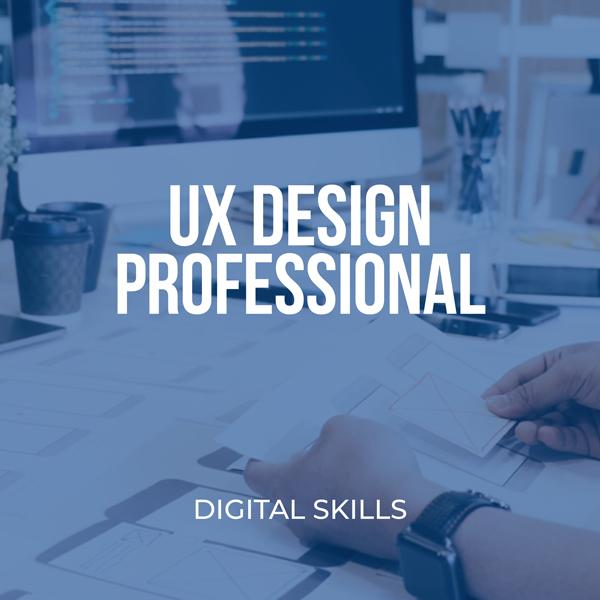 UX Design Professional