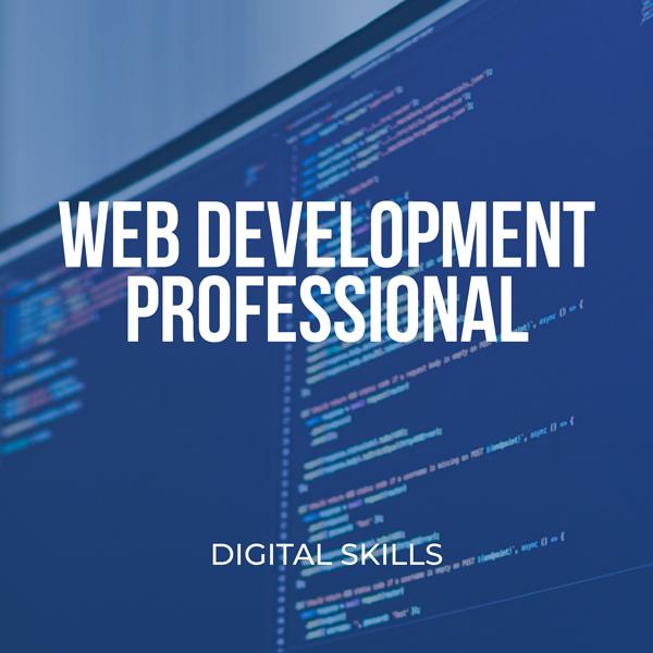Web Development Professional